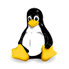 VNC Server for Linux